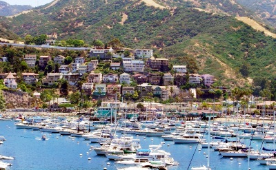 Cruises from san diego to the pacific coast day cruises sciox Choice Image